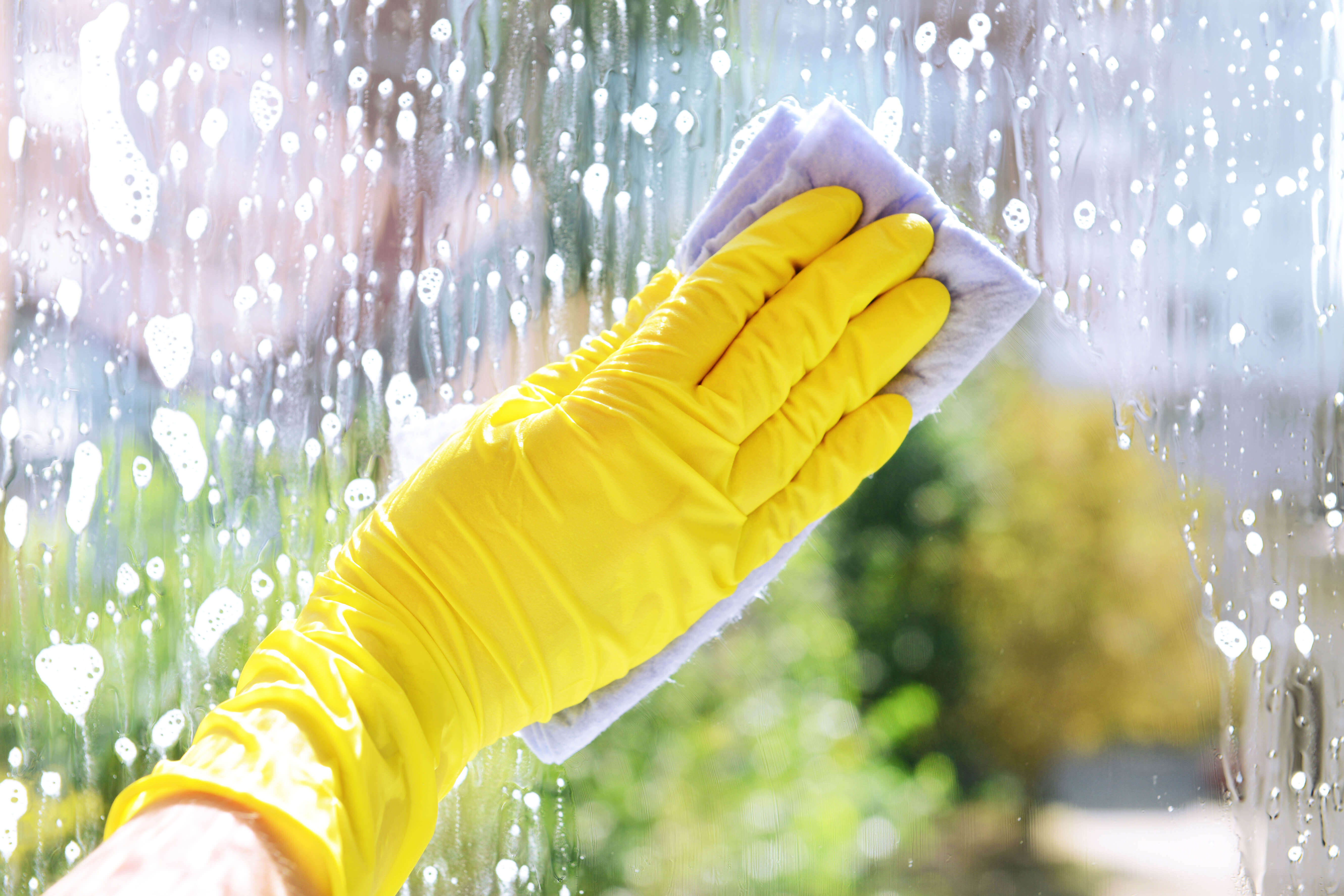 Glass Fencing - Melbourne - Cleaning And Maintaining Glass Pool Fencing
